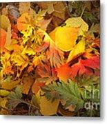 Autumn Masquerade Metal Print by Martin Howard