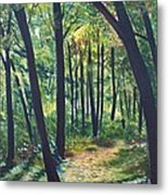 Autumn Meditation Metal Print by Jean Ann Curry Hess