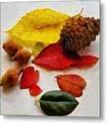 Autumn Medley Metal Print by Jeff Kolker