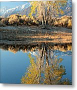 Autumn Mirrored Metal Print