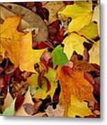 Autumn Moods 19 Metal Print