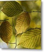 Autumn Mosaic Metal Print