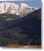 Autumn Snowcapped Mountain - Golden Ears - British Columbia Metal Print