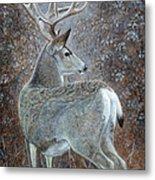 Autumn Muley Metal Print