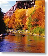 Autumn Oak Creek  Metal Print