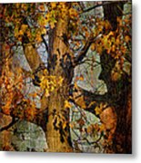 Autumn Oaks In Dance Mode Metal Print