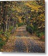 Autumn On Bike Trail  Metal Print