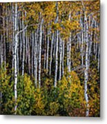 Autumn On Mcclure Pass Metal Print