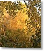 Autumn On The Bosque Metal Print