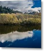 Autumn On The Klamath 10 Metal Print