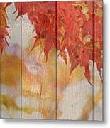 Autumn Outdoors 2 Of 2 Metal Print