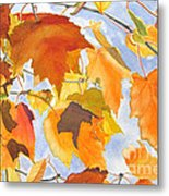 Autumn Outside My Window Metal Print