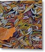 Autumn Palette Metal Print