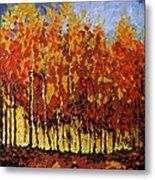 Autumn Palette Metal Print by Vickie Warner