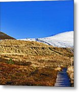 Autumn Panorama In Cairngorms National Park With Cairn Gorm Scotland Metal Print