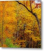 Autumn Peak Colors Metal Print