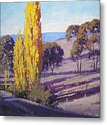 Autumn Poplars Metal Print by Graham Gercken