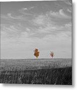 Autumn Prairie Trees Metal Print