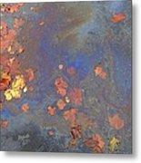 Autumn Puddle Metal Print