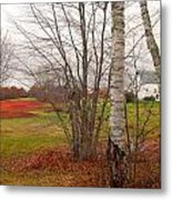 Autumn Red Field Maine  Metal Print