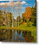 Autumn Reflecting Metal Print