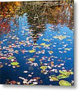 Autumn Reflections Metal Print by Bill Wakeley