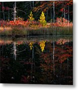 Autumn Reflections - Red Eagle Pond Metal Print by Thomas Schoeller