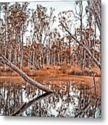 Autumn Reflections V2 Metal Print