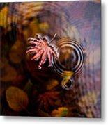 Autumn Ripples Metal Print by Mike Reid