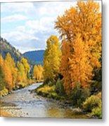 Autumn River In Montana Metal Print