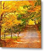 Autumn Road Home Metal Print by Terri Gostola