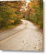 Autumn Road II Metal Print