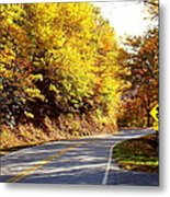 Autumn Road Metal Print by Mary Koval