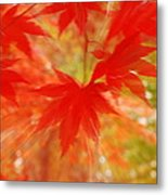 Autumn Rush Metal Print