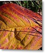 Autumn Saga Metal Print
