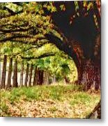 Autumn Shelter Metal Print