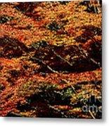 Autumn Solarisation 1 Metal Print