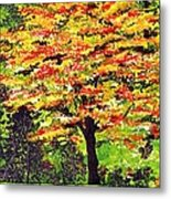 Autumn Splendor Metal Print by Patricia Griffin Brett