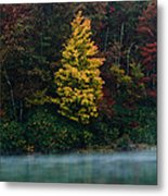 Autumn Splendor Metal Print by Shane Holsclaw
