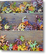 Autumn Steps Metal Print by William Schmid