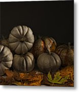 Autumn Still Life Metal Print