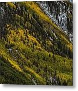 Autumn Streaks Metal Print