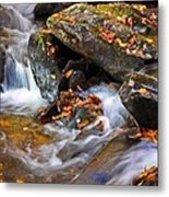 Autumn Stream North Georgia Metal Print