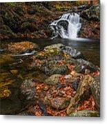 Autumn Streams In Tamworth Metal Print