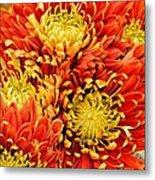 Autumn Sunrise Bouquet Metal Print