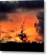 Autumn Sunrise From The Back Deck Metal Print