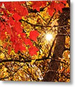 Autumn Sunrise Painterly Metal Print