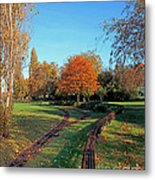 Autumn Tracks Metal Print