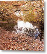Autumn Tranquility Metal Print