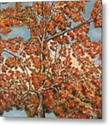 Autumn Tree Metal Print by Michael Anthony Edwards